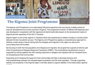 UN Kigoma Joint Programme